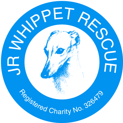 JR Whippet Rescue